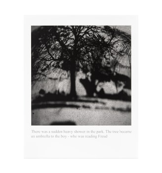 Prints-and-Editions-thumbnail-LKS_There-was-a-sudden-heavy-shower-in-the-park-min